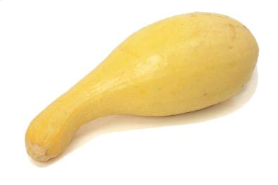 Consuming squash for the hypotension sufferer