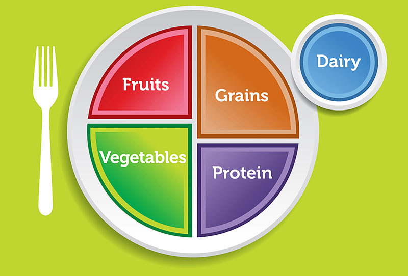Myplate The Health Journal