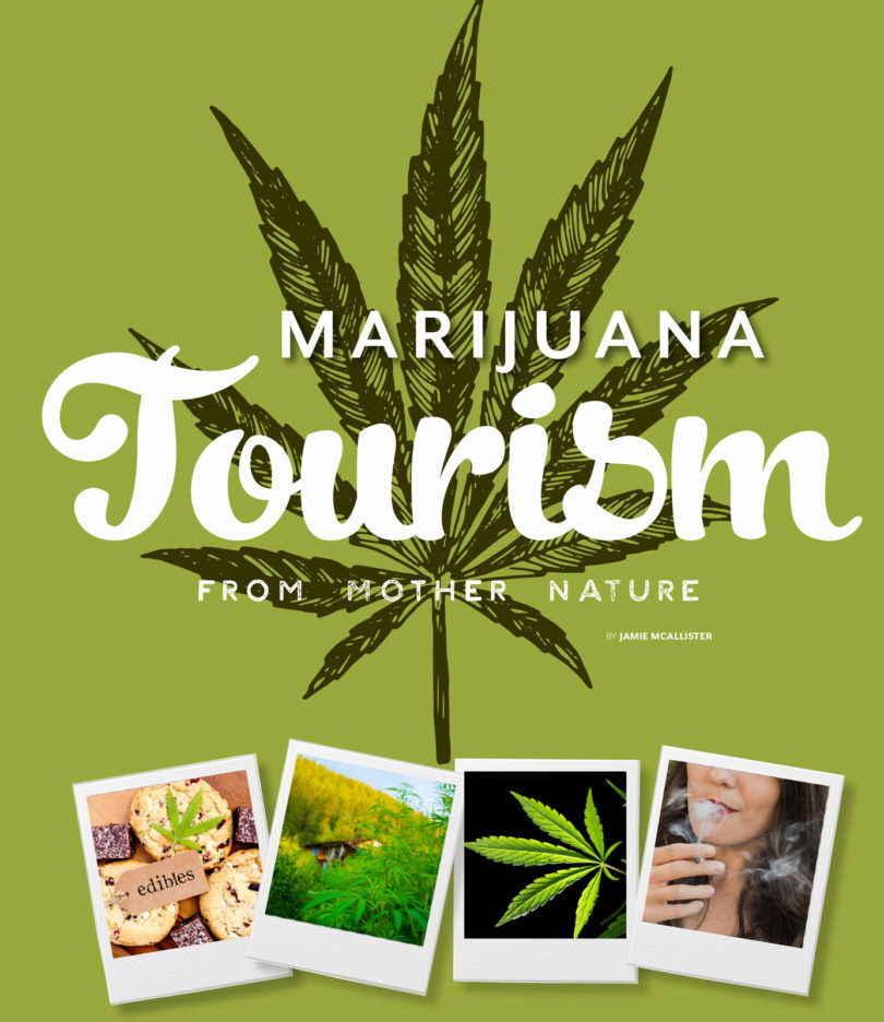 the use of marijuana is illegal and should stay illegal Find out as much as you can about illegal and legal drugs and their effects on your body and brain the more informed you are, the more confidently you can make the.