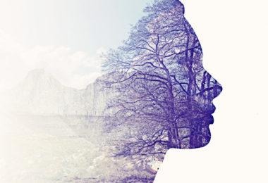 human health and environmental